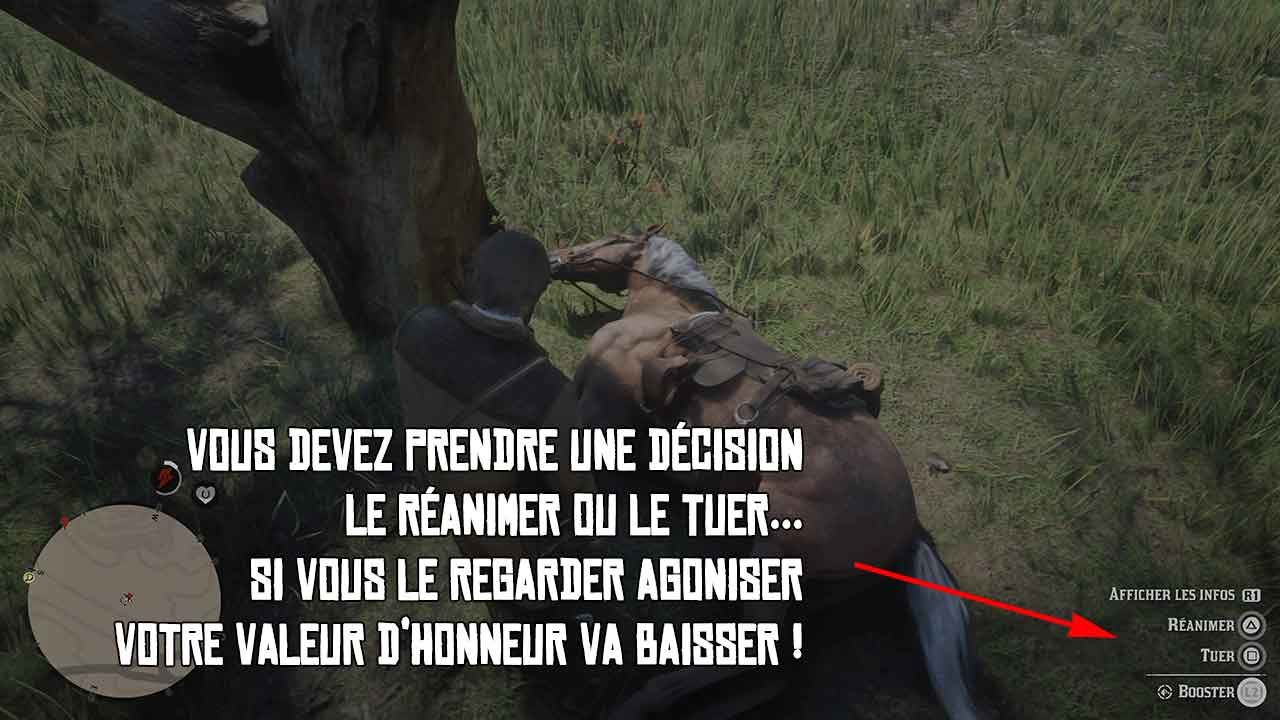 red dead redemption instructions