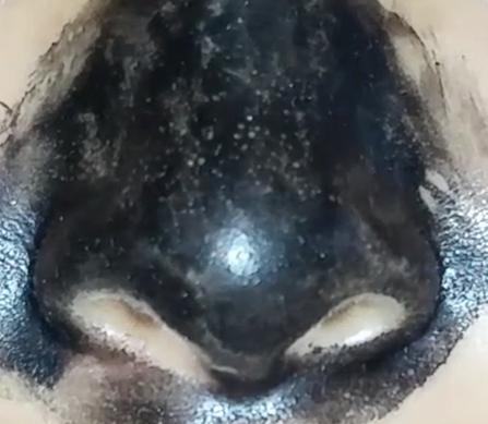 my scheming blackhead mask instructions