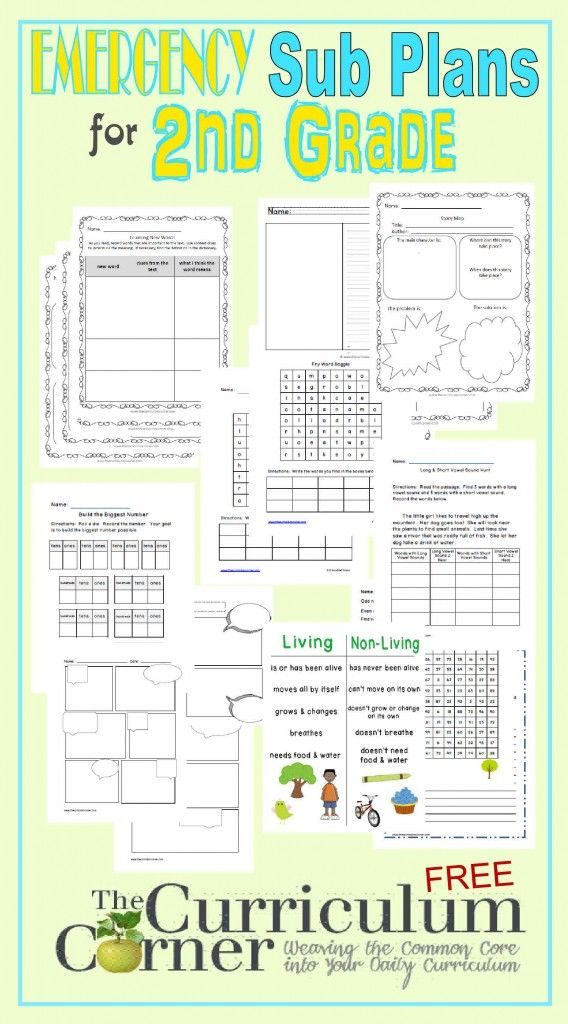 differentiated instruction lesson plans for first grade