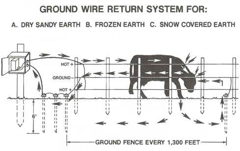 petsafe in ground fence installation instructions