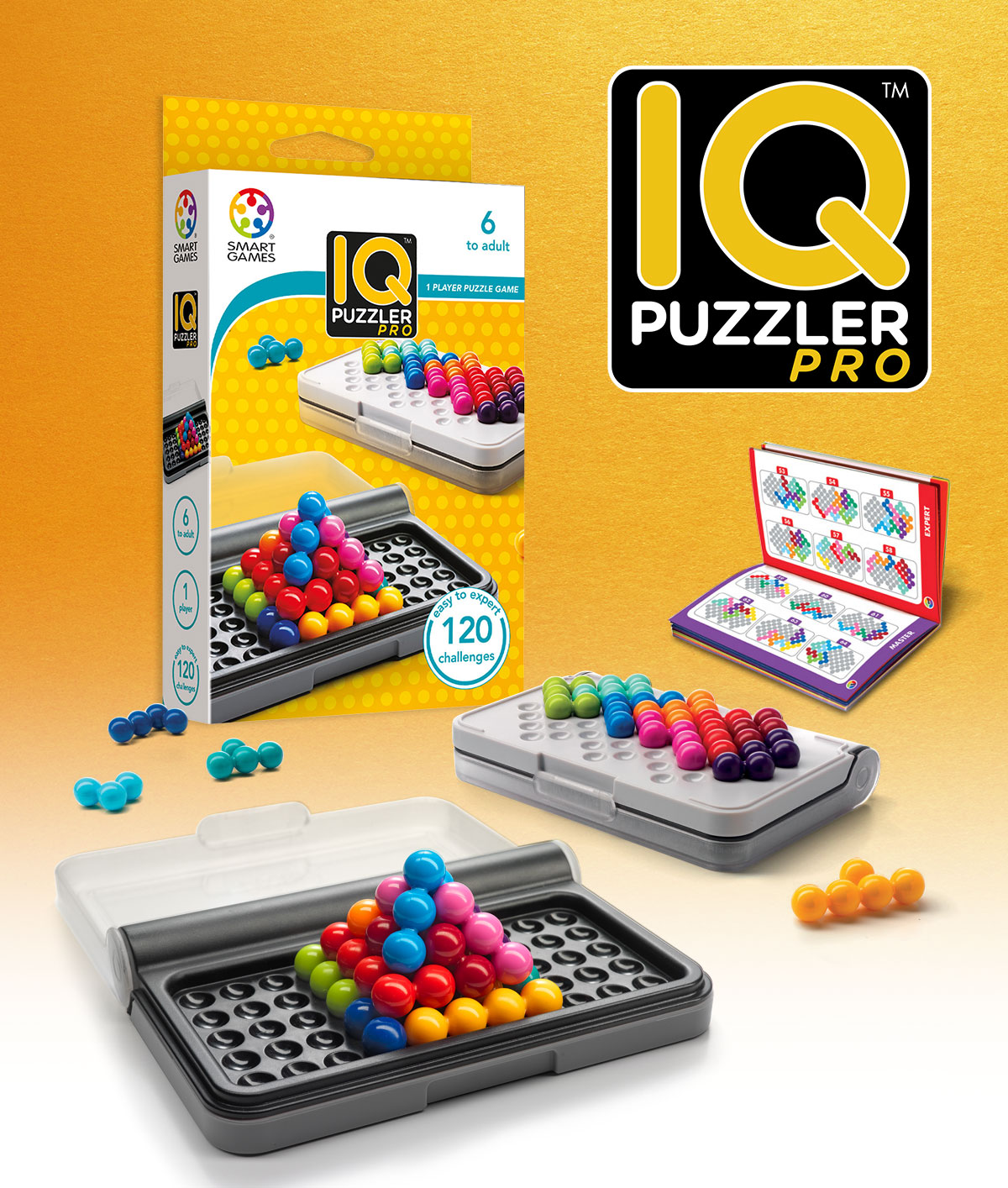 smart games iq puzzler instructions