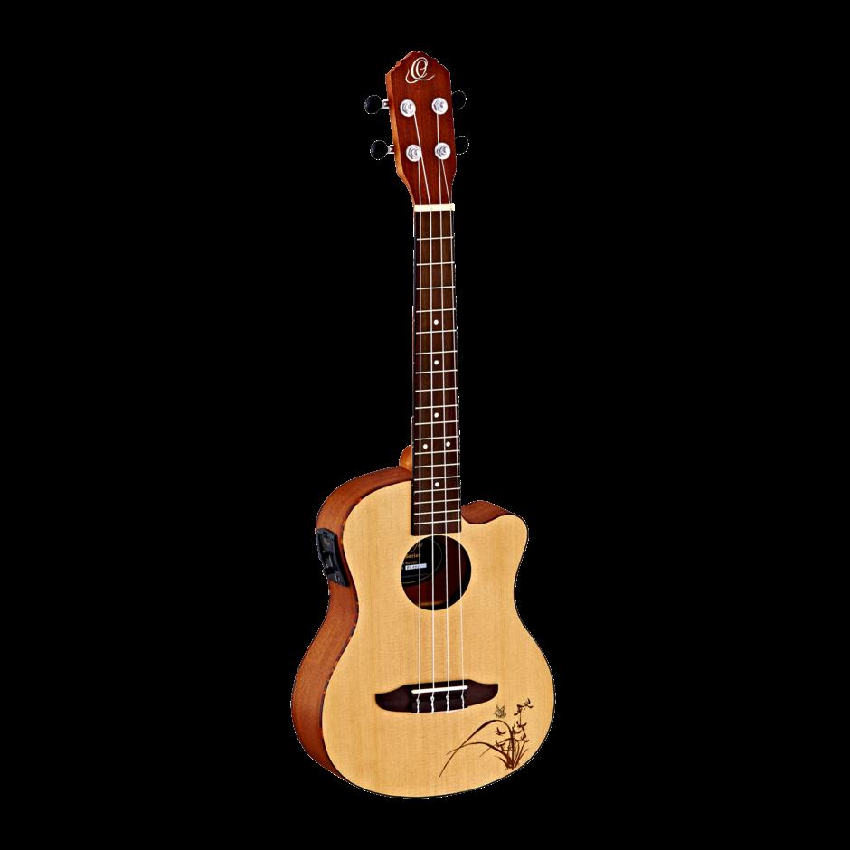 tenor guitar instruction book